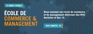 Master Marketing Rennes