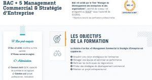 master management commercial strategie entreprise rennes